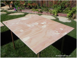 Prep the wood by filling imperfections with wood filler and sanding the surface and edges.